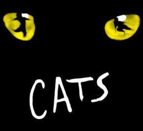 Cats-Broadway-Caiola